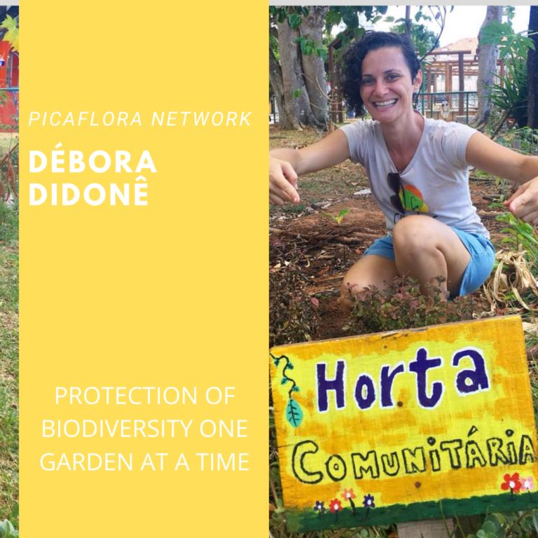 Debora Dedone – Pica Flora Network