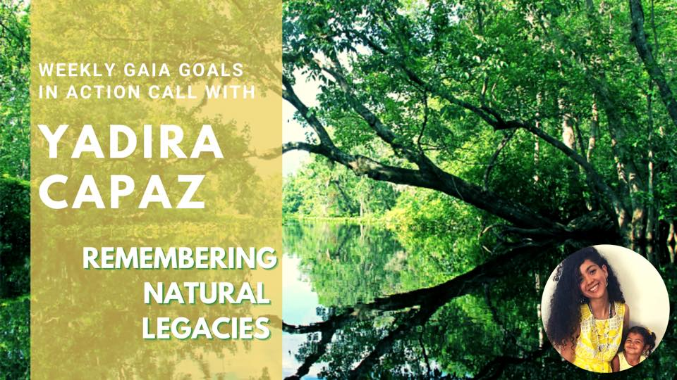 Swamp Therapy in the Everglades – Yadira Capaz