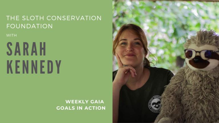Sloth Conservation – Sarah Kennedy
