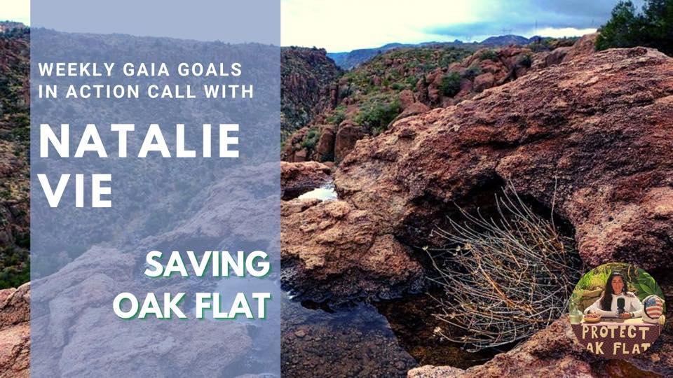 Saving Oak Flat – Natalie Vie